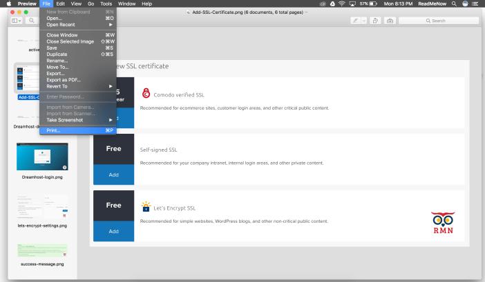 Print Option Merge pdf Pages