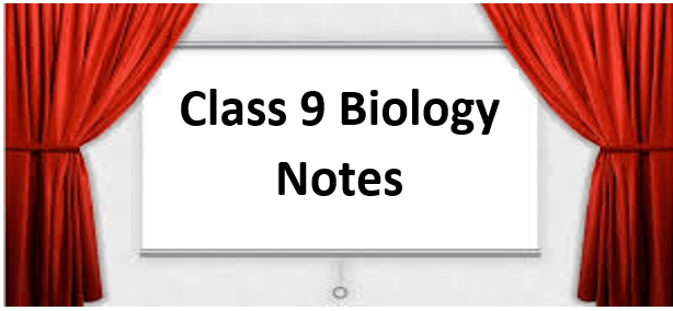 Class 9 Biology Notes