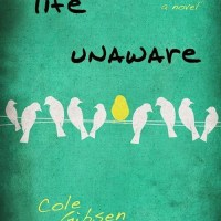 Cover Reveal: Life Unaware by Cole Gibsen