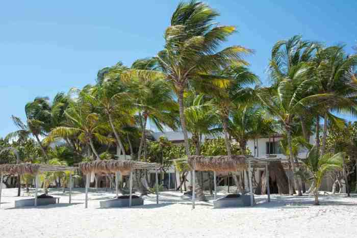 Tulum guide, the dream beach of the Caribbean! Don't miss these top things to do in Tulum!