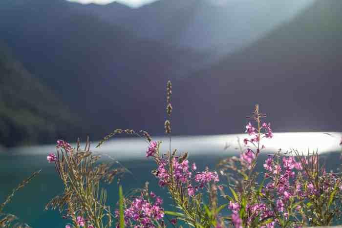 Vernagt-Stausee, Lago di Vernago, Lake Vernago - best lakes in South Tyrol