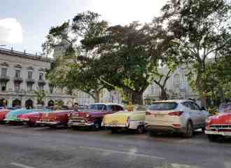 Best restaurants in Havana! Don't miss to go to these must-go places - vegetarian restaurants included
