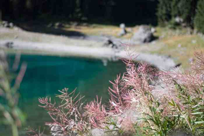 Best lakes in South Tyrol, Lake die Carezza, Karersee, Lake Carezza