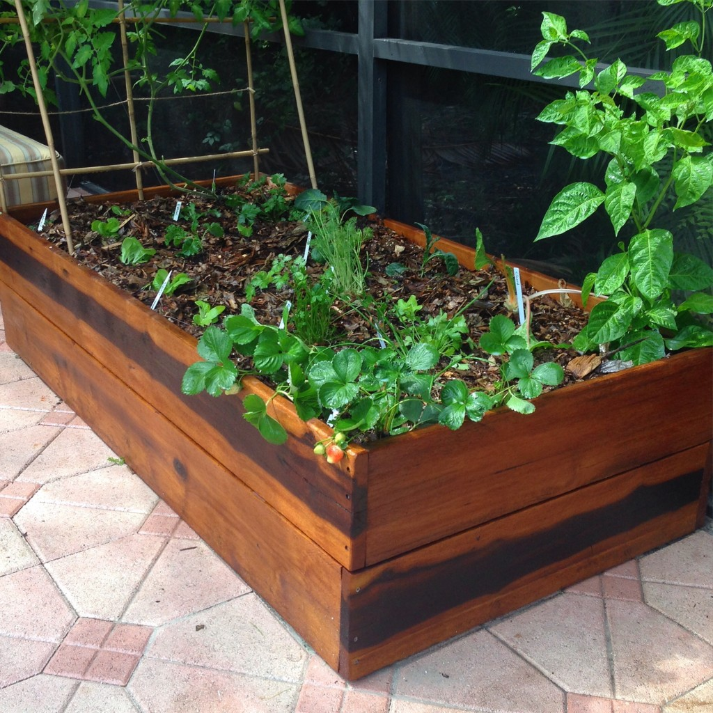 Raised Bed Gardens In Miamiready To Grow Gardens