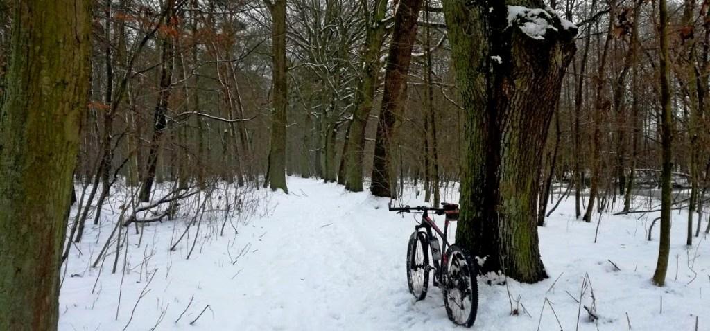 jazda rowerem zima