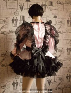 Mitzi – Sissy Satin & Organza Dress – In Pink Here But Ask About Other Colour Choices 2