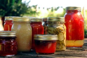 If you're interested in home canning, here's a great primer on getting started! #ReadyNutrition #Homesteading
