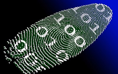 Six Easy Methods You Can Use to Protect Your Identity