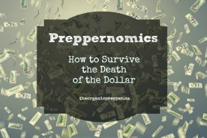 Preppernomics: How to Survive While the Dollar Dies
