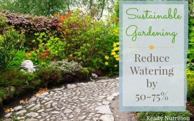 Sustainable Gardening: Reduce Watering by 50-75%
