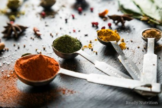 spice of life(1)