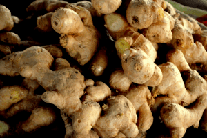ginger root public domain