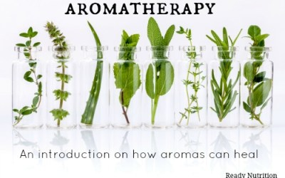 Aromatherapy: An Introduction on How Aromas Can Heal