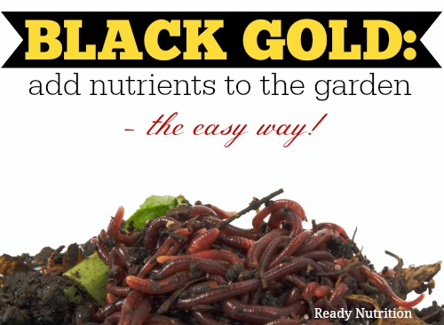 Black Gold: Add Nutrients to the Garden – The Easy Way!