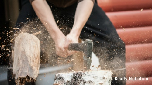 Woodcutting When the SHTF: What You Need to Know To Hastily Acquire a Wood Supply