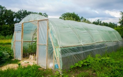 3 Emergency Uses for Plastic Sheeting