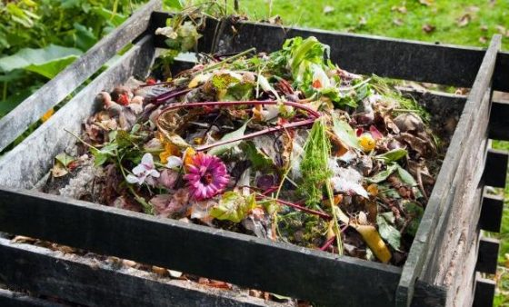 Turn Trash Into Treasure: The Easy Way To Make A Compost Pile Or Bin