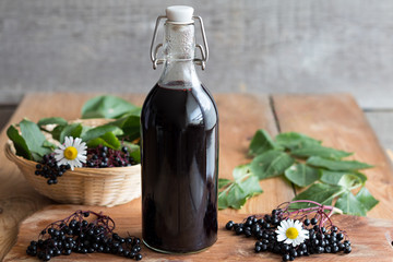 Homemade Elderberry Extract and 3 Ways To Use It