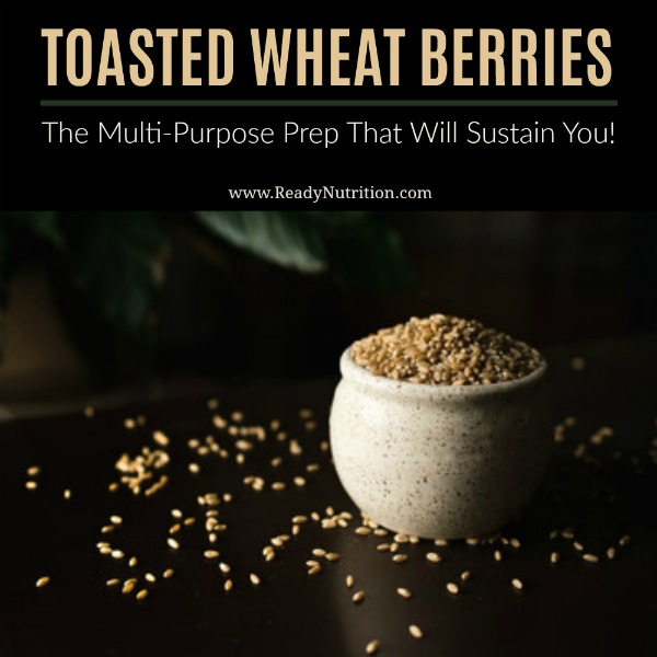 I'm having a summer love affair w/this recipe and have been putting it on everything from salad toppings, as a breakfast cereal, to using it as chip alternatives! You guys are going to ❤️ toasted wheat berries! #ReadyNutrition #CleanEating #HealthyFood