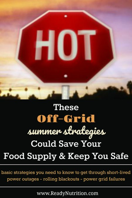 In the coming months, the power grid will be pushed to extremes and can force homes off the grid if temperatures reach maximums. Keep these tips and considerations in mind to help you become more resilient to the lasting effects of power outages during extreme heat events.