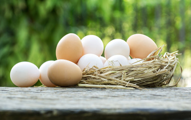 What You Need to Know About Duck Eggs Vs. Chicken Eggs