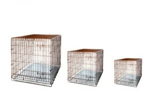 Airedale Terrier crate