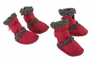 Airedale Terrier dog shoes
