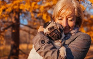Pug being held by a woman in the park