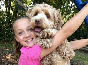 Labradoodle with little girl