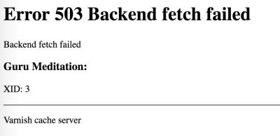 Varnish - Error 503 Backend fetch failed
