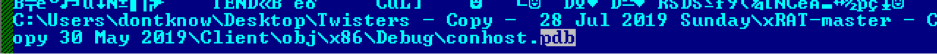 One of the Malicious Binary' Debug Files