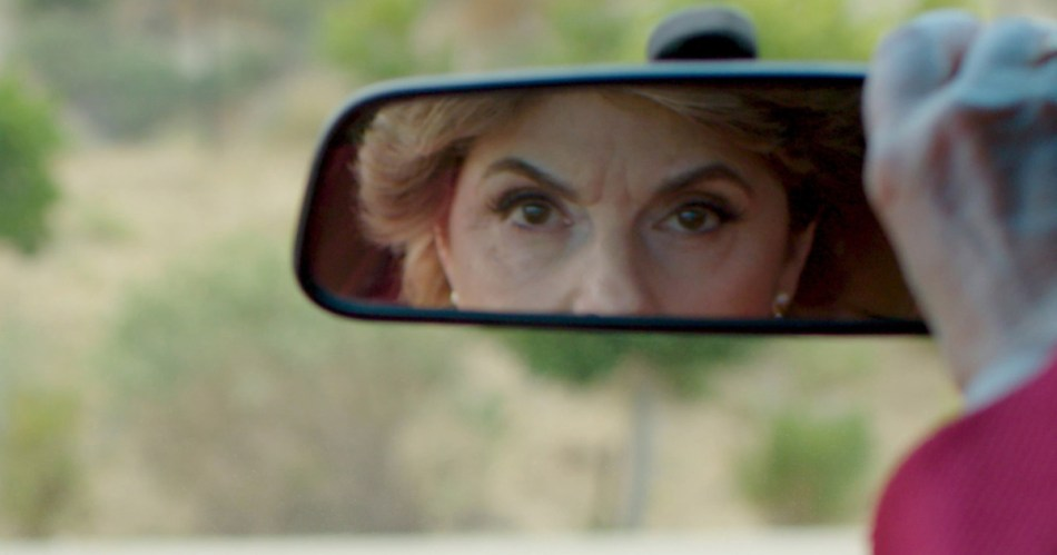 Seeing Allred - Gloria Allred - Netflix - Review