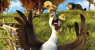 Duck Duck Goose Review