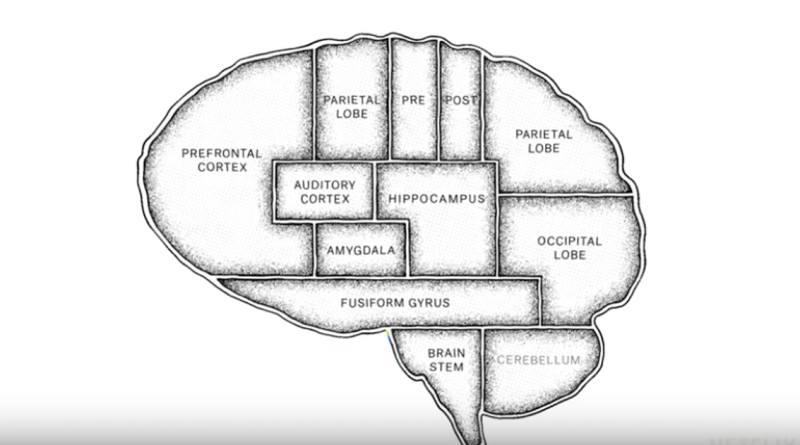"""The Mind, Explained Episode 2 (Netflix) recap: """"Dreams"""""""