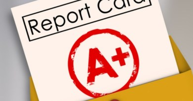 The 2020 Halfway Report Card: The Best of the Year So Far