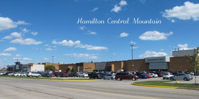 IMG 4434 2 - Neighbourhoods on the Hamilton Central Mountain