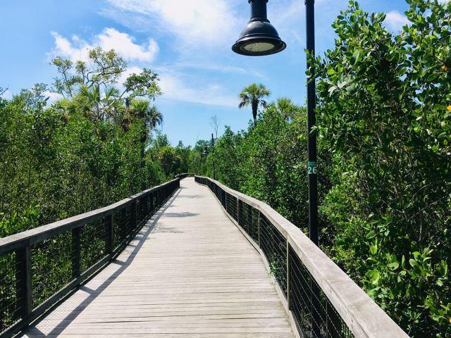 Gordon River Greenway in Naples Florida