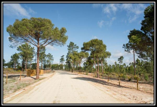 Farmland for family house Comporta