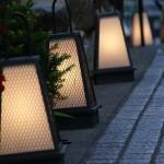 東京エリアで初詣におすすめのデートコース