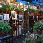 2015年 入谷朝顔市 開催時間と朝顔の種類情報