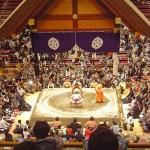 大相撲に行ってみたい! けれど、高そうなチケットの値段情報