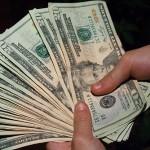 蛇の抜け殻のお財布の入れ方 お金持ちになりたい人は見るべし!