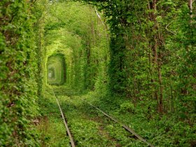 出典:Tunnel of Love in Ukraine | Places To See In Your Lifetime