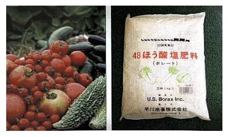 ホウ酸を含む野菜や肥料の画像