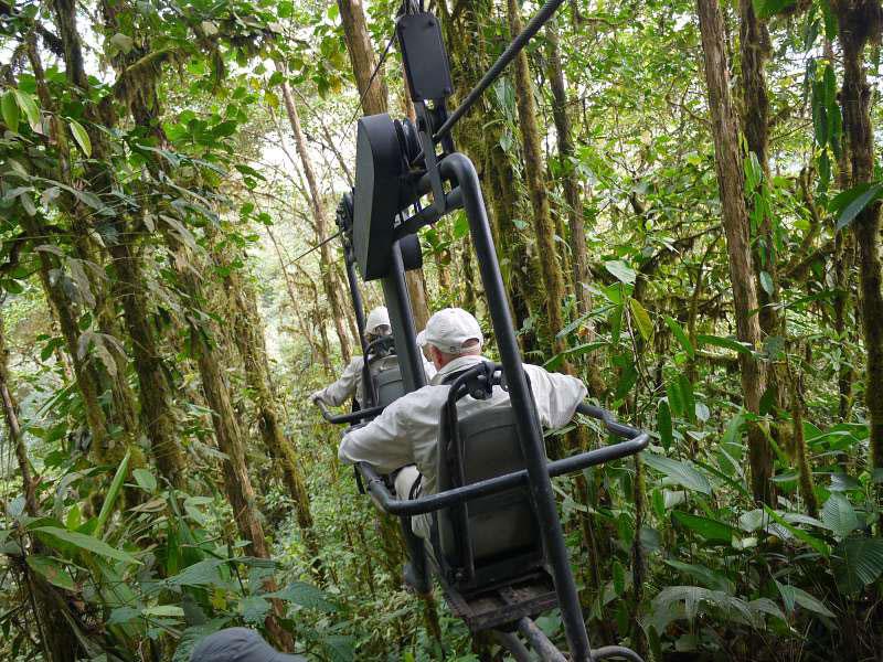 mashpi-lodge-3 rainforests