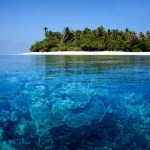 World's Largest 3-D Printed Reef Installed in Maldives