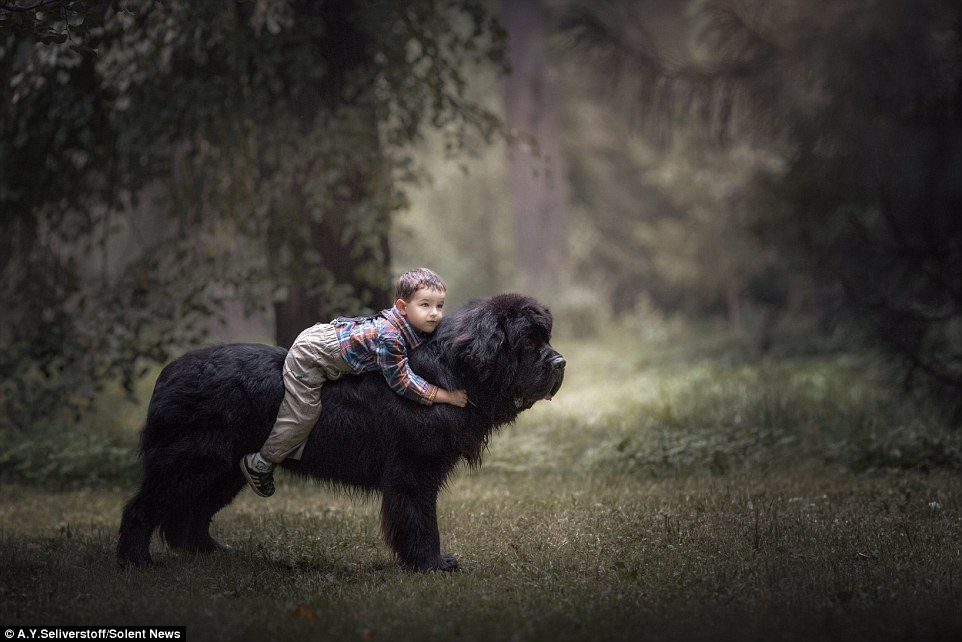dogs-and-kids-4