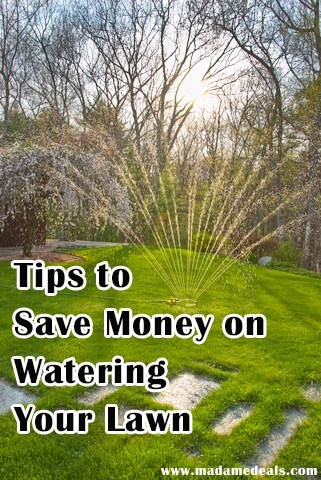 Don't miss our tips for How to Save on Lawn & Garden Watering this year!  Your lawn can be beautifully lush and green despite the budget and area!