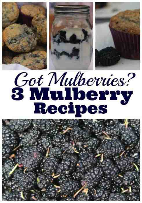 Got mulberries then you need a mulberry recipe. We have muffins, parfait and smoothie.
