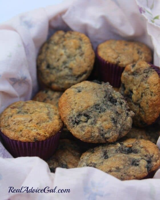 Mulberry recipe, mulberries are perfect for muffins. This muffins recipe is a winner.